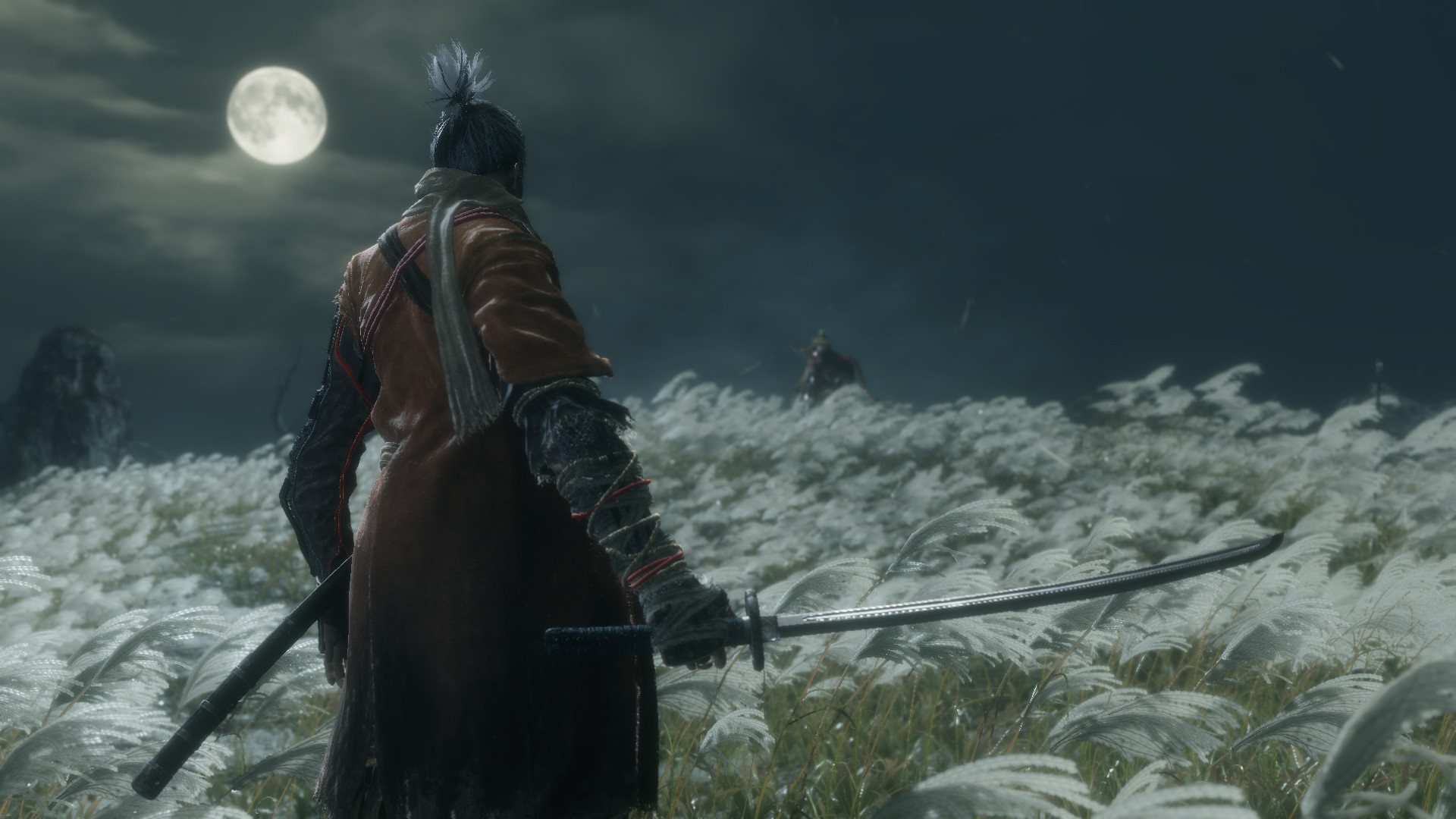 sekiro: shadows die twice, boss fight